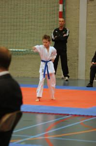 NK Gojukai Karate 2013 - Kata Job Hillebrand